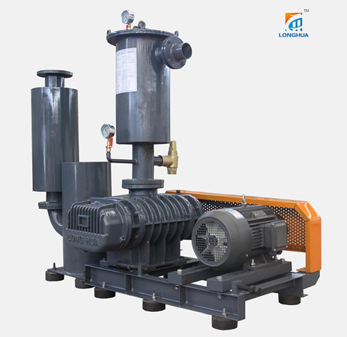 HDLH-V series roots vacuum pump